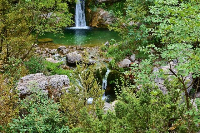 nature-2729596_1280.jpg