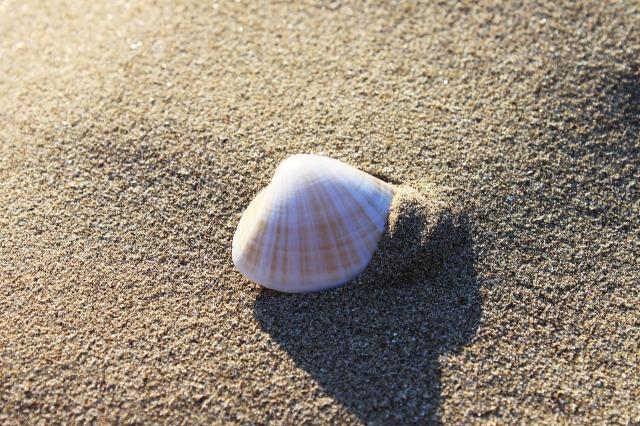 sand-3234146_1280.jpg