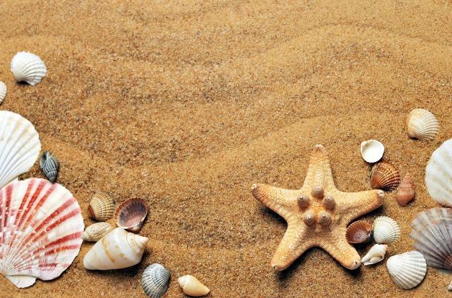 sea-1337565_1280.jpg