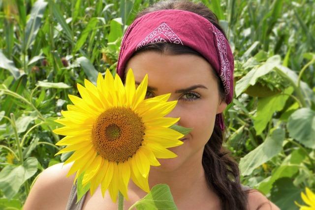 sunflower-2699771_1280.jpg
