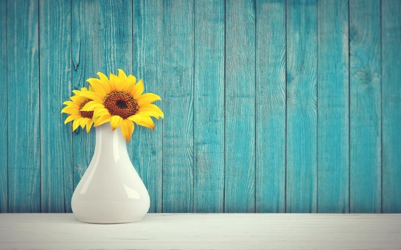 sunflower-3292932_1280.jpg