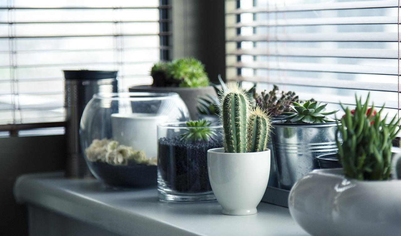 pots-716579_1280.jpg